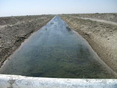 WB Project: P147203 - Case Study of Water Consumer Associations (WCAs), Uzbekistan. Strengthening irrigation