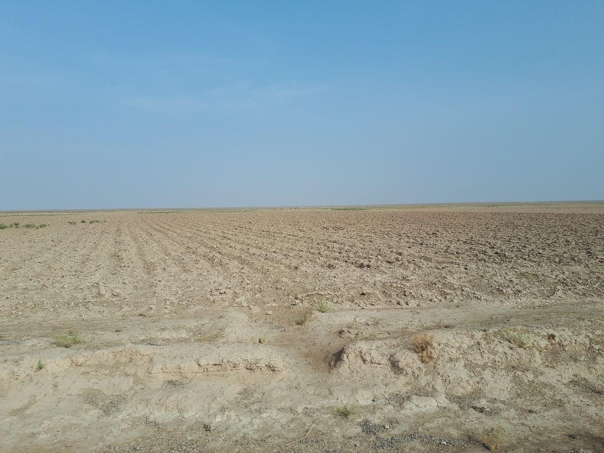 Scaling Solar Program in Uzbekistan